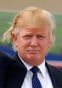 Donald-trump-bad-hair-day