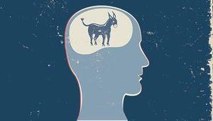 420-donkey-profile-democratic-convention-quiz_imgcache_rev1345211907006_web